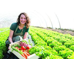 kredi agro cover