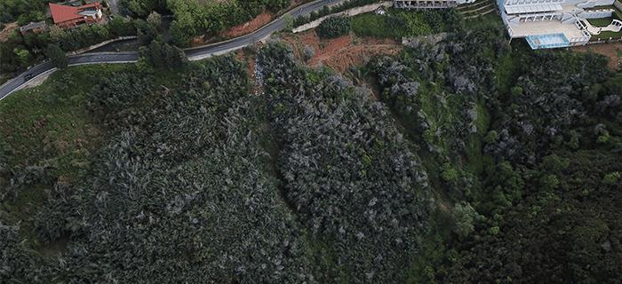 Pyll në Dajt Tiranë Credins Bank